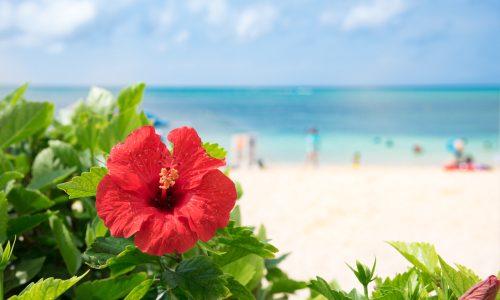 沖縄のヒゲ脱毛サロン&クリニックおすすめ10選!値段と効果を徹底調査したまとめ