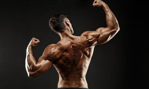 【超手軽】背筋の筋トレに効果的なメニュー10選|自重やジムマシン、ダンベルなど器具使用のタイプ別鍛え方