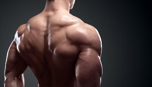 【三角筋の強化】肩の筋トレメニュー10選|自重やダンベル、ジムマシン使用のタイプ別!超手軽なのに効果的な鍛え方