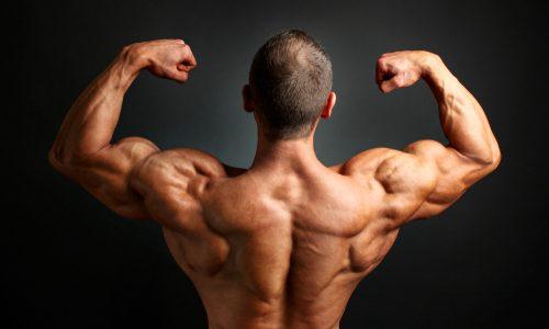 【逞しい背中へ】僧帽筋の鍛え方10選|自重やジムマシン使用のタイプ別!首から肩にかけての筋肉強化&肩こり解消できるメニュー