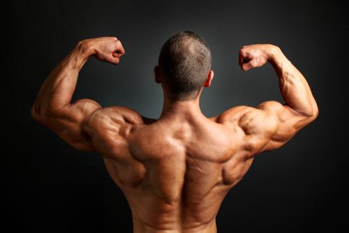 逞しい背中へ】僧帽筋の鍛え方10選 自重やジムマシン使用のタイプ別!首から肩にかけての筋肉強化&肩こり解消できるメニュー   neutral.