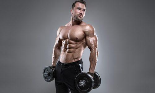 【背中の筋肥大】ダンベルデッドリフトのやり方|ベストな頻度や重量&効率的なメニューを徹底解説