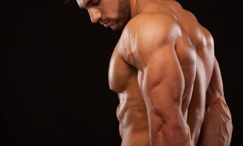 前腕筋を鍛える効果的な筋トレメニュー10選|自重やダンベル、グッズ使用のタイプ別!効率のいい頻度も徹底解説