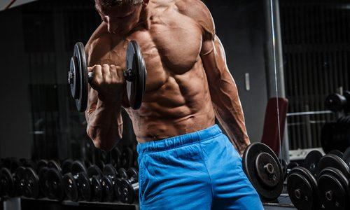 ダンベル使用の筋トレで効果的なメニュー12選|腕や肩、背筋を鍛えるタイプ別!初心者にもわかりやすく徹底解説