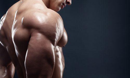肩甲下筋の鍛え方8選|ダンベルやマシンなどのタイプ別!効果的なトレーニングと痛みを防ぐストレッチを徹底解説